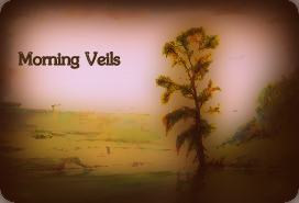 Morning Veils